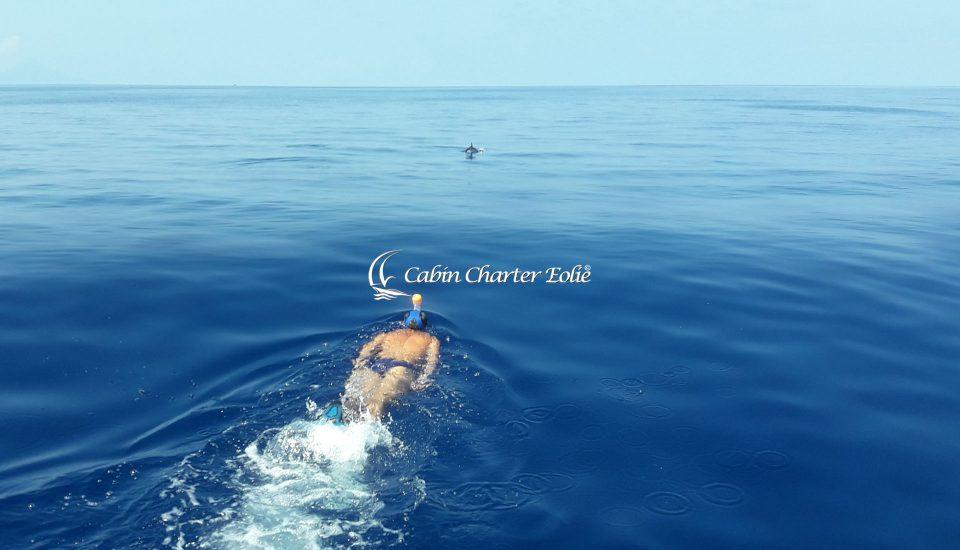 nuotare con i delfini - Cabin Charter Eolie Imbarco per Single Crociera Vacanza in Barca a Vela Aeolian Islands Italy Matrimonio Team Building